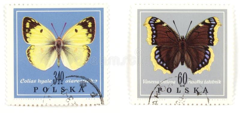 Borboletas - collectio dos selos imagens de stock royalty free