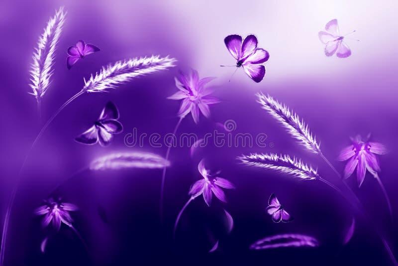 Borboletas cor-de-rosa e roxas contra um fundo de flores selvagens em tons roxos e violetas Imagem natural ultravioleta artística fotografia de stock