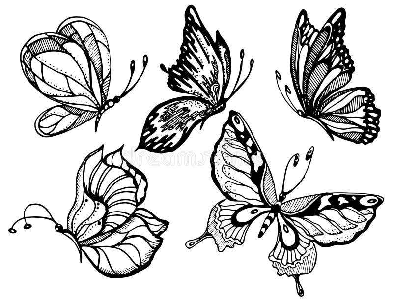 Borboletas preto e branco no fundo branco para o projeto e a decoração, logotipo, clipart, páginas colorindo Vetor ilustração royalty free