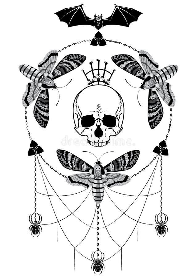 Borboletas, scull, cnain, bastão e aranha imagem de stock