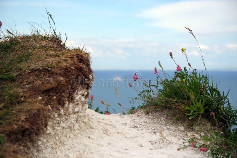 Bord de la falaise, Douvres, Angleterre photos libres de droits
