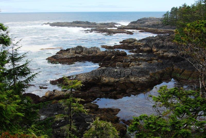 Bord de la mer dans le pays de la côte Pacifique photo stock