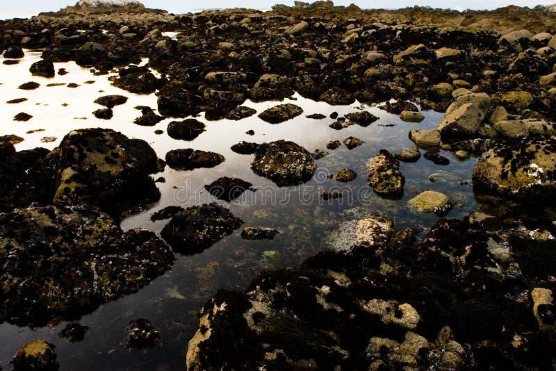 Download Bord de la mer rocheux image stock. Image du paysage, réflexion - 735831