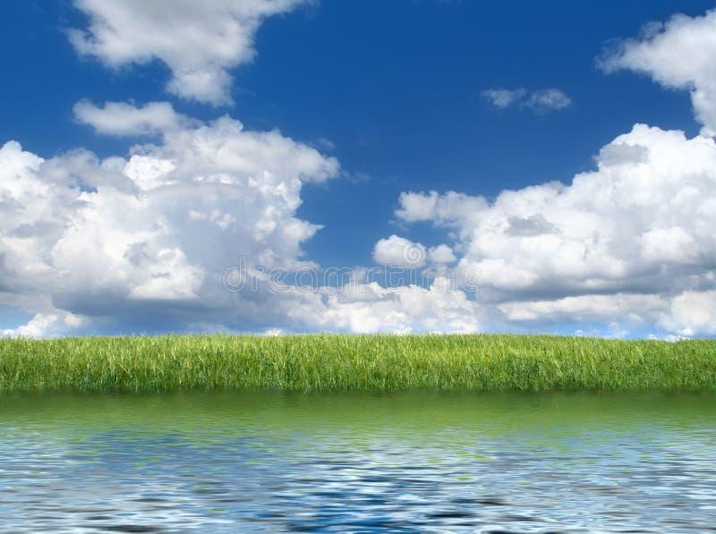 Bord de lac avec le grassfield vert photographie stock