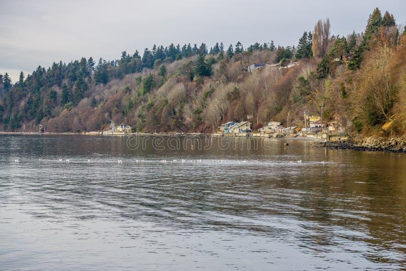 Bord de mer Shoreline d'hiver photo libre de droits