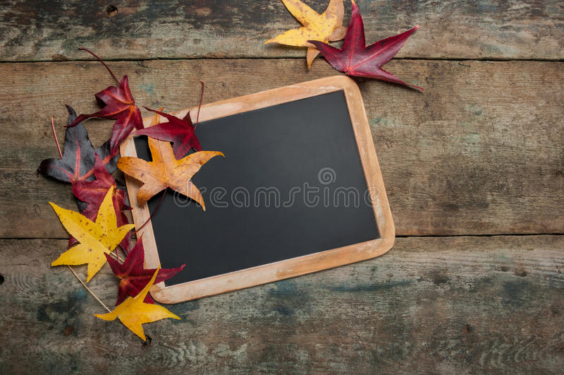 Bord met de herfstbladeren stock foto