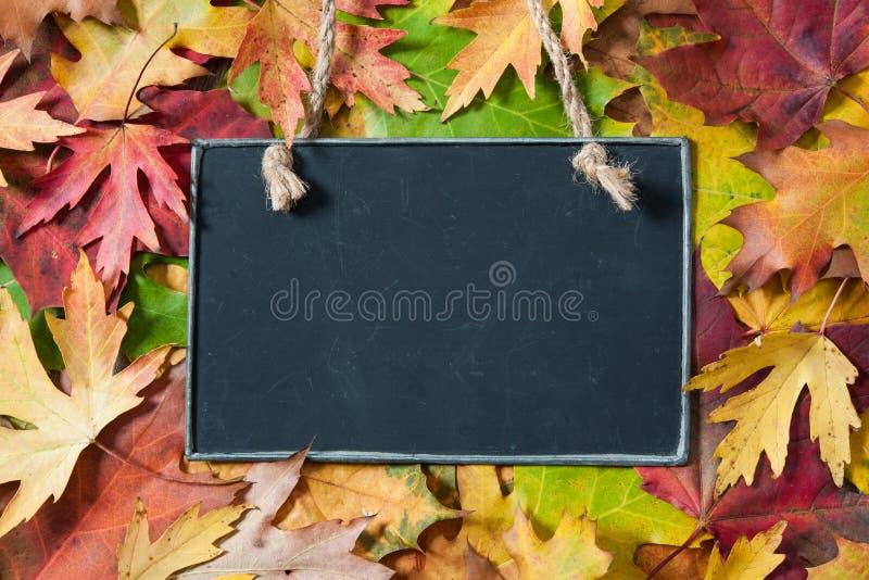 Bord op herfstbladeren stock afbeelding
