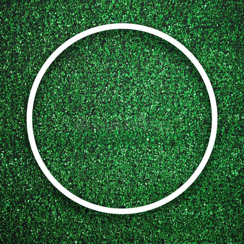 Borda branca circular do quadro na grama verde com fundo da sombra Conceito do elemento do fundo da decoração Espa?o da c?pia par fotografia de stock royalty free