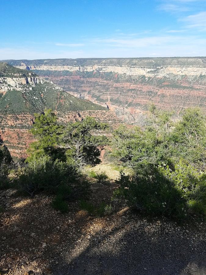 Borda norte do Grand Canyon imagens de stock royalty free