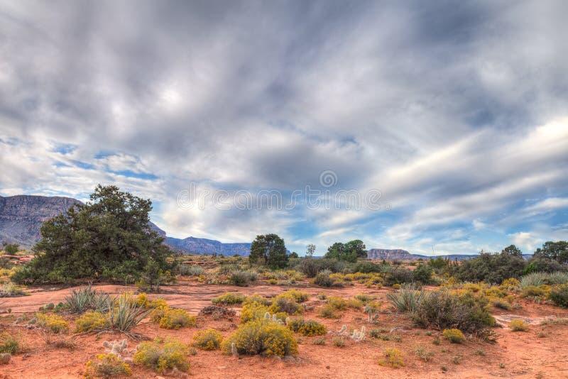 Download Borda-Toroweep Nacional Do Parque-n Da Garganta AZ-grande Foto de Stock - Imagem de penhascos, mais: 65578050