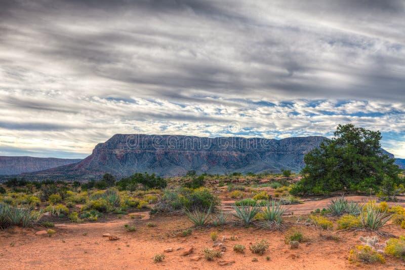 Download Borda-Toroweep Nacional Do Parque-n Da Garganta AZ-grande Imagem de Stock - Imagem de naturalizado, nuvens: 65578053