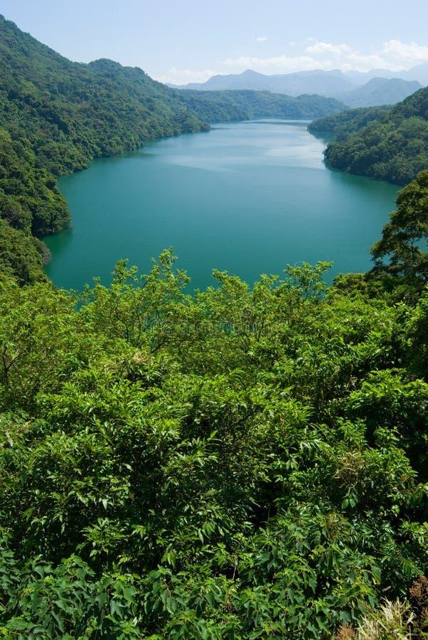 Bordadura calma do lago por florestas e por montanhas imagem de stock