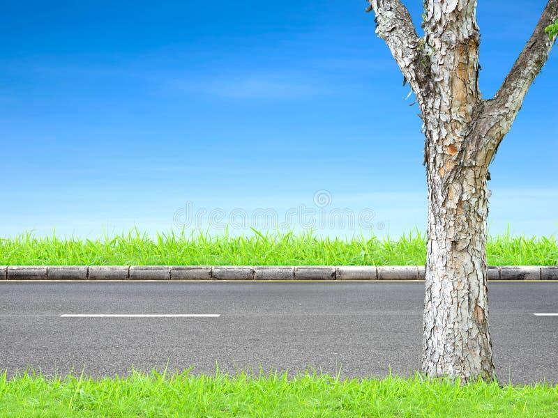 Borde de la carretera y árbol fotografía de archivo