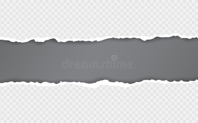 Borde de papel rasgado Rayas de papel rasgadas Ripped ajustó tiras de papel horizontales Ilustraci?n del vector stock de ilustración