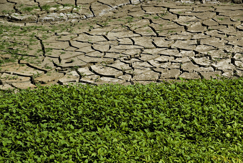 Download The border stock image. Image of drought, nature, line - 8342959