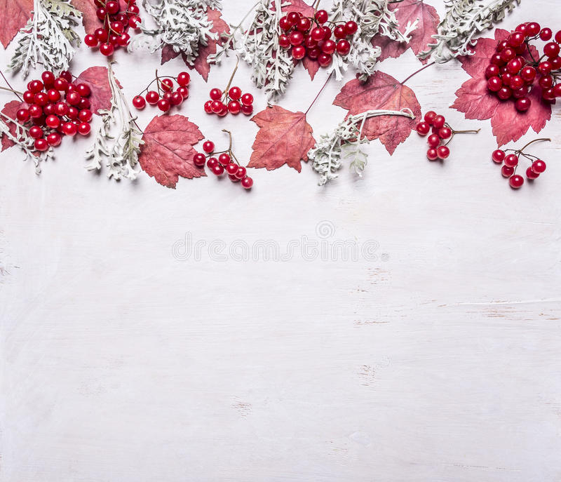 Border autumn scenery, leaves, berries Viburnum, plants, place text,frame wooden rustic background top view banner. Border autumn scenery, leaves, berries royalty free stock images