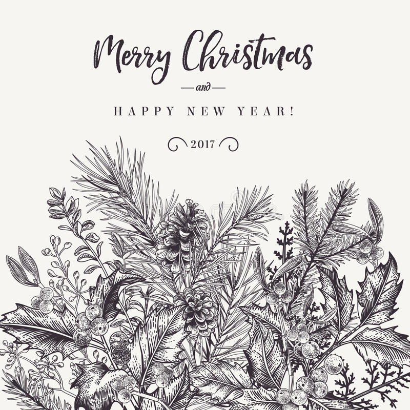 Border with Christmas plants. royalty free illustration