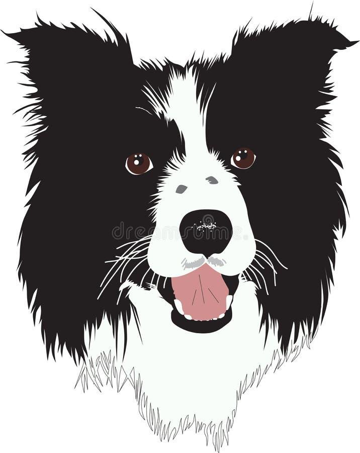 Border Collie Dog - Illustration Royalty Free Stock Images