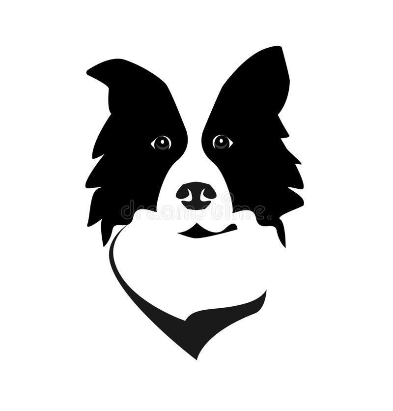 Border Collie royalty free illustration