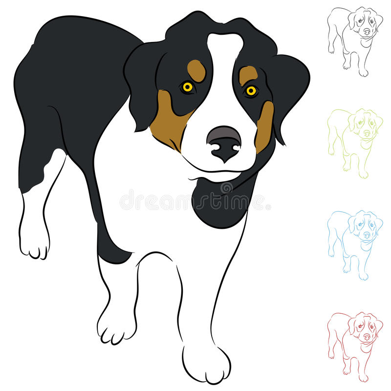 Download Border Collie Puppy stock vector. Image of view, border - 25833059