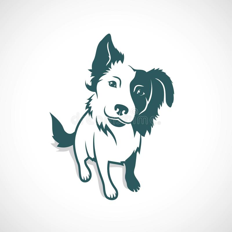Free Border Collie - Vector Illustration Stock Photography - 97422942