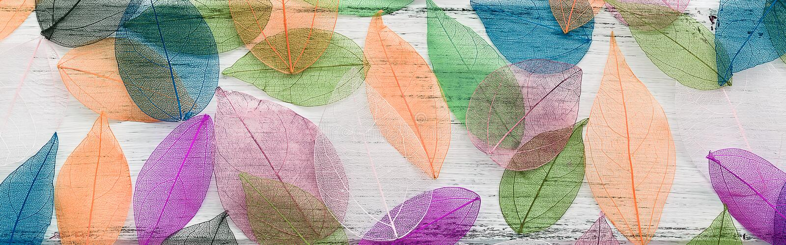A border of colored transparent skeleton leaves on a white rustic wooden background. Top view, flat lay, banner royalty free stock photo