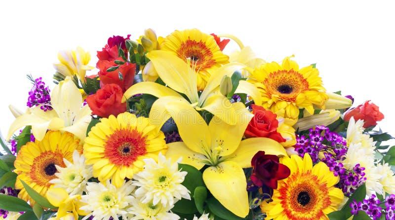 border den frodiga fjädern för färgrika blommor arkivbild