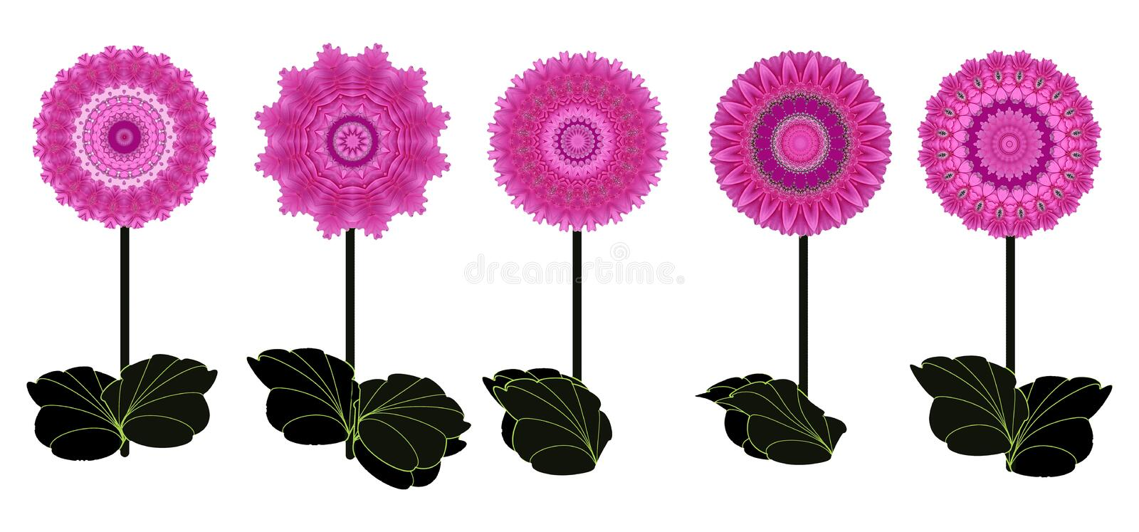 Border of five pink flowers on white royalty free illustration