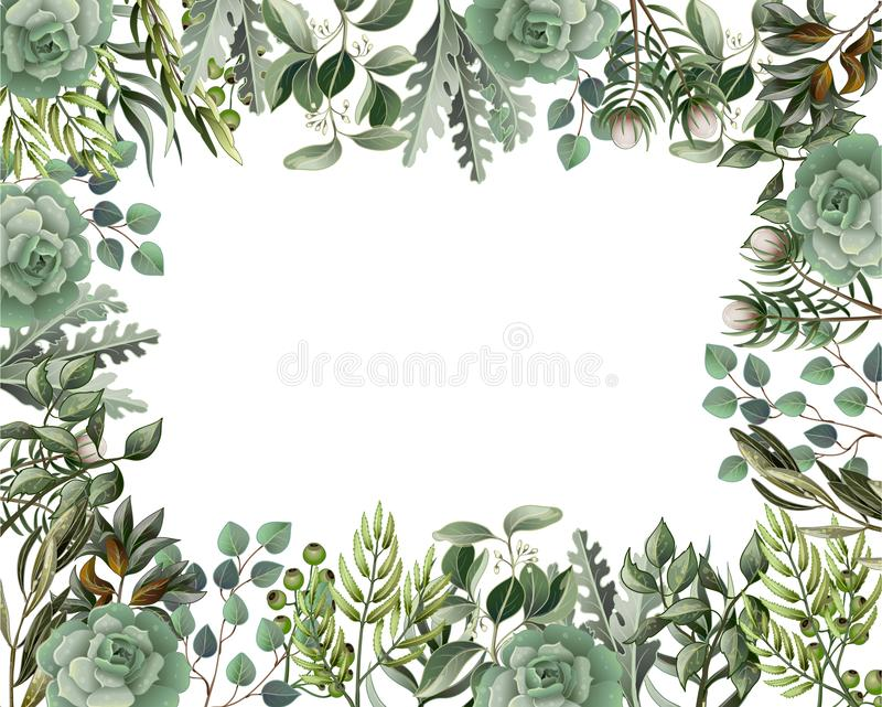 Border and frame with leaves and succulent in watercolor style. Eucalyptus, magnolia, fern and other vector illustration. Border and frame with leaves and royalty free illustration