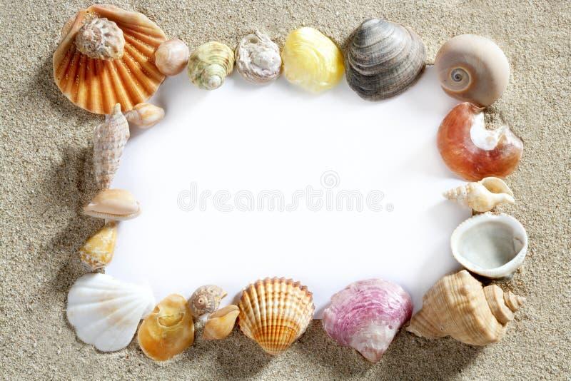 Border frame summer beach shell blank copy space stock photography