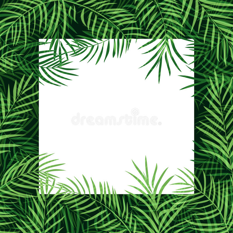 Border frame tropical palm leaf royalty free illustration