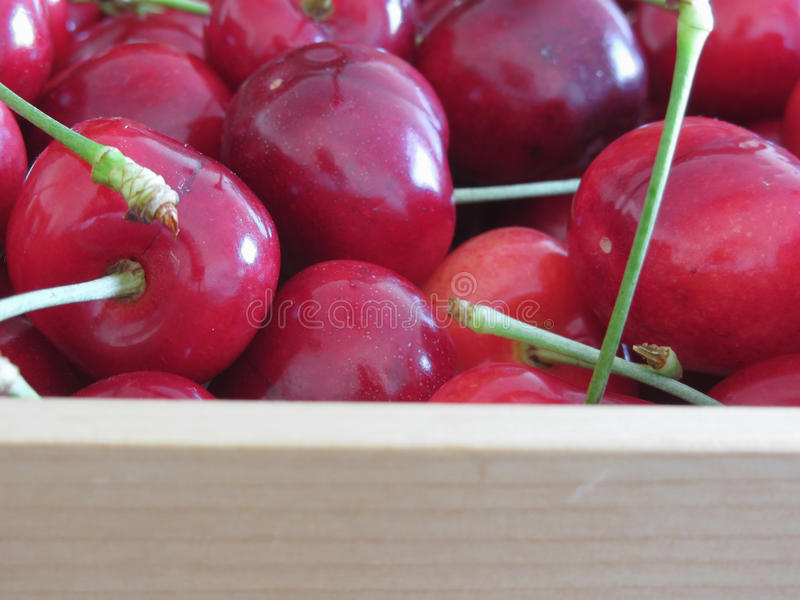Border of fresh cherries on wooden background with copy space.  stock photography
