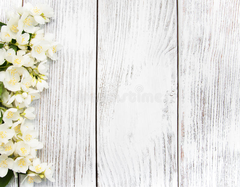 Download Border With Jasmine Flowers Stock Photo