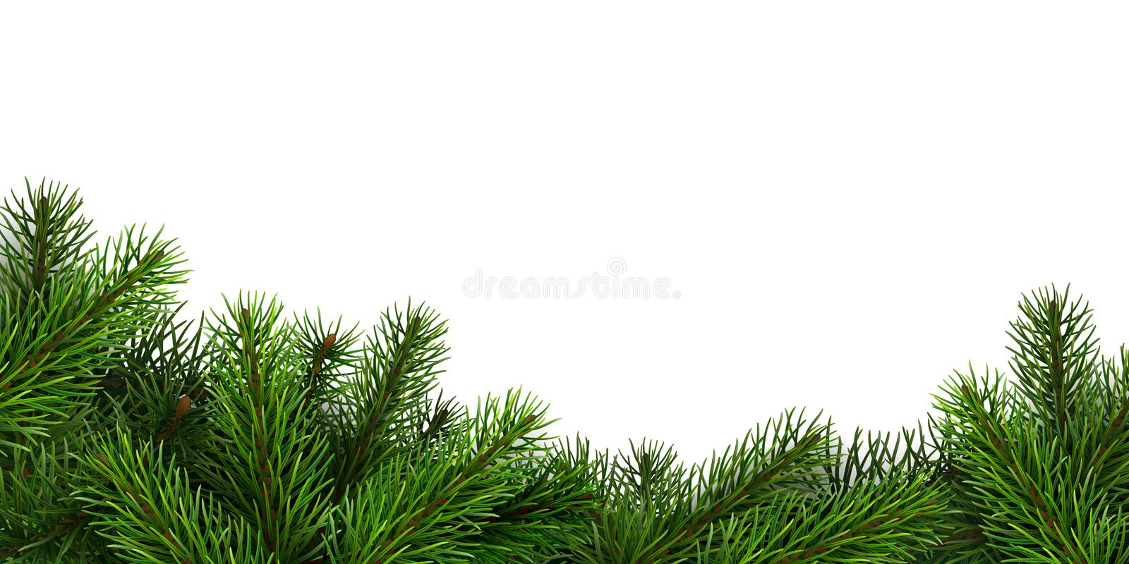 A border of realistic spruce branches. royalty free stock photos