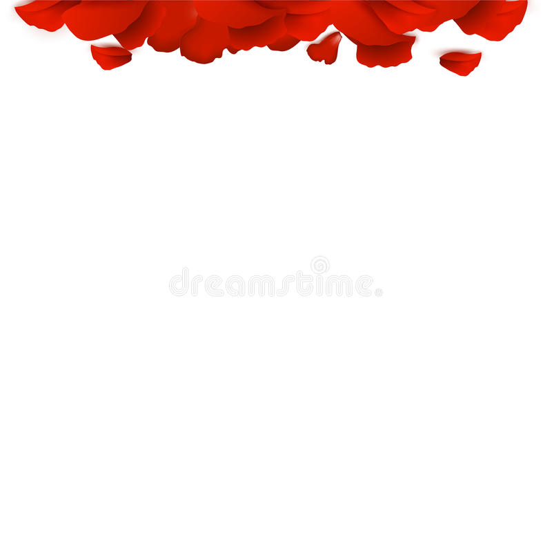 Border of rose petals. On a white background stock illustration