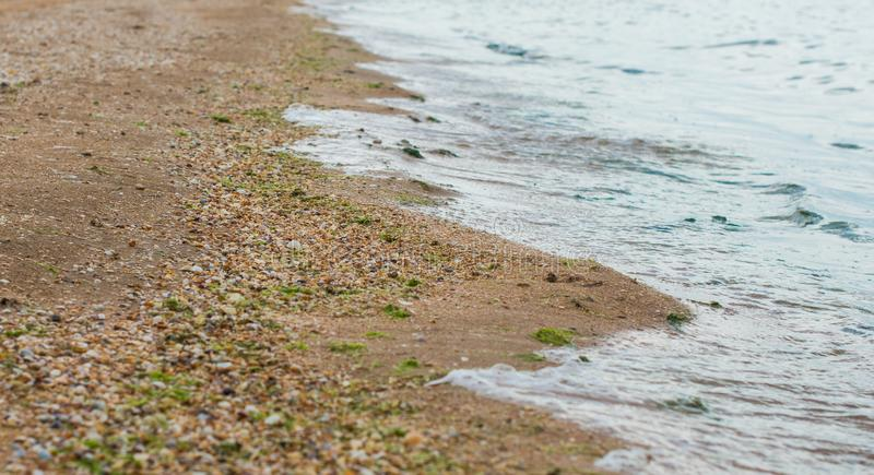 The border of the sea and the shell beach. stock photos