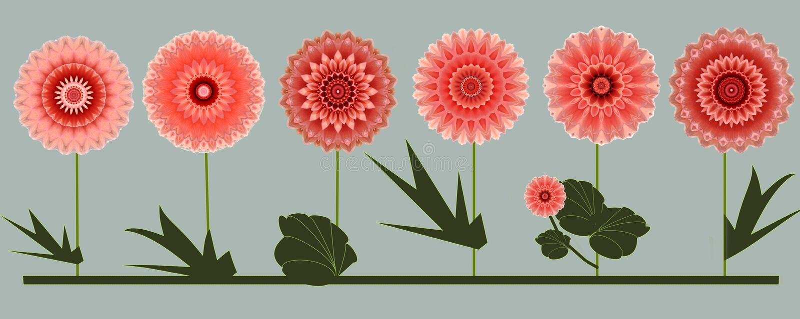 Border of six rose summer flowers digital art design. Greetings card or wrapping paper with a border of six rose digital art design flowers on grey stock illustration