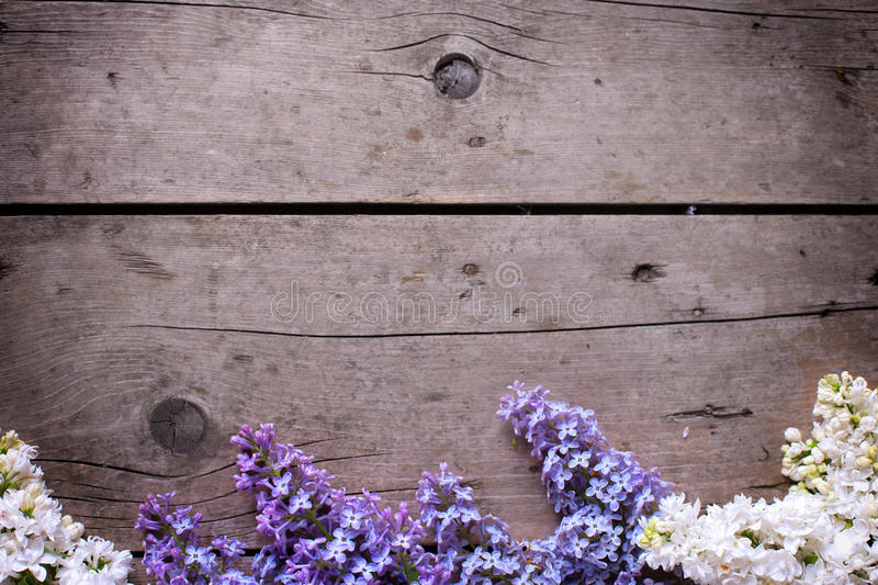 Border from spring lilac flowers on vintage wooden planks. Selective focus. Place for text. Floral still life stock photo