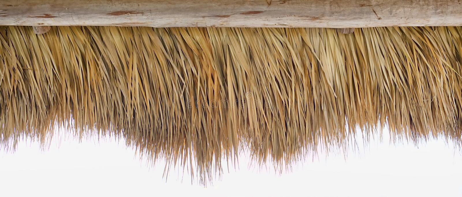 Tiki Thatch Strip Border. Border strip of the inside tiki thatch, on a white background royalty free stock image