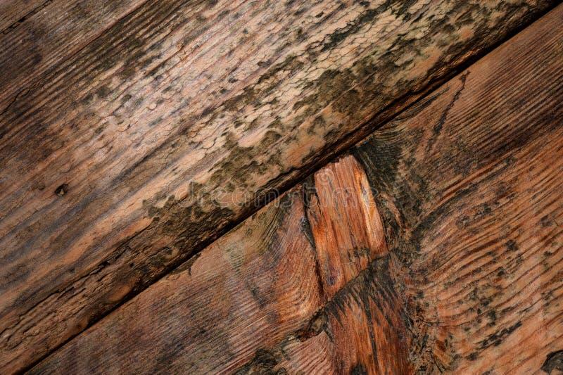 Bordi anziani di struttura di legno di lerciume fotografia stock