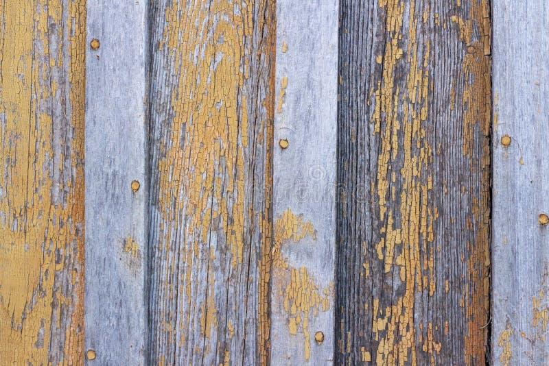 bordi di legno di struttura del fondo con la pelatura dell'arancia della pittura fotografie stock