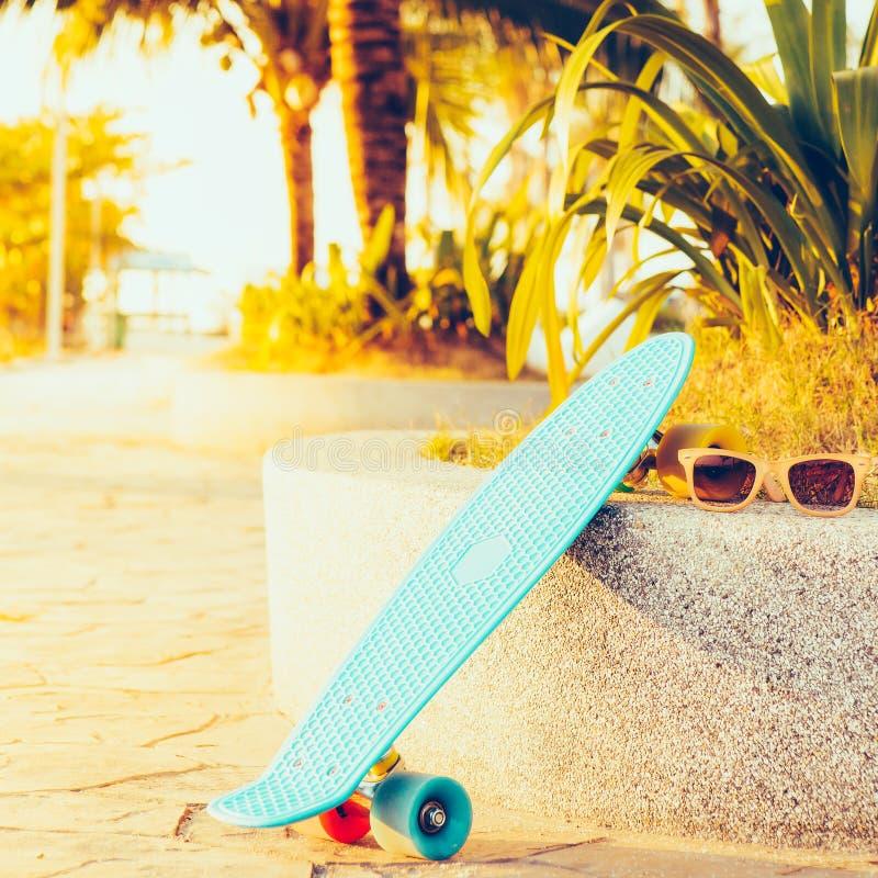 Bordo blu-chiaro del penny di longboard con le ruote multicolori pronte fotografie stock