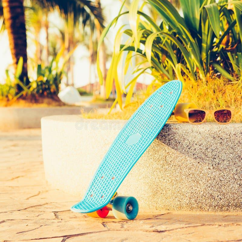 Bordo blu-chiaro del penny di longboard con le ruote multicolori pronte immagine stock libera da diritti