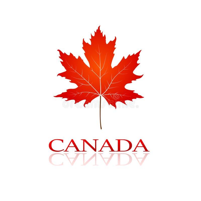 Bordo da folha de Canadá ilustração royalty free