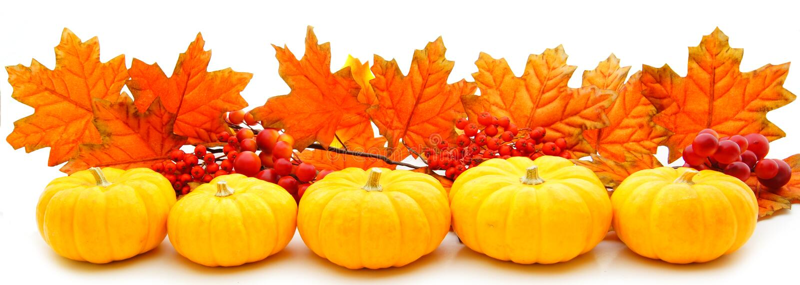 Bordo di autunno fotografie stock libere da diritti