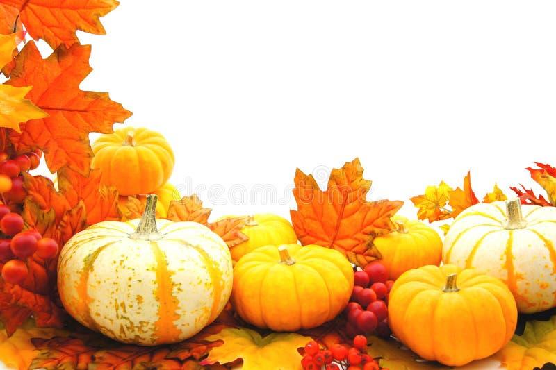 Bordo di autunno immagini stock