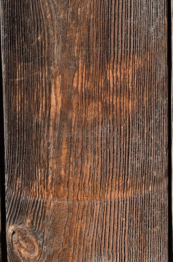 bordo di legno antiquato con sbiadire i fungino di malattia fotografie stock libere da diritti