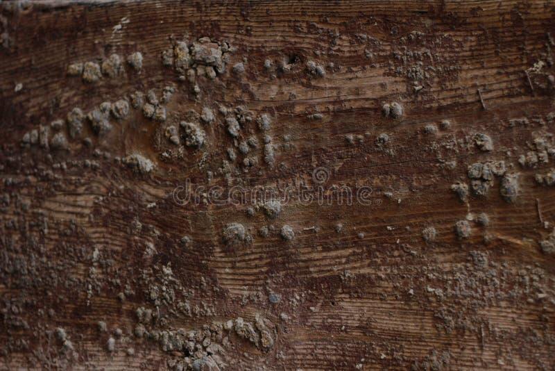 Bordo di legno con struttura marrone incrinata della pittura immagine stock libera da diritti