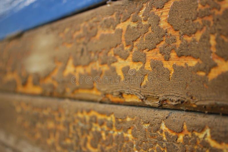 Bordo di legno d'annata con un tocco di blu immagini stock libere da diritti