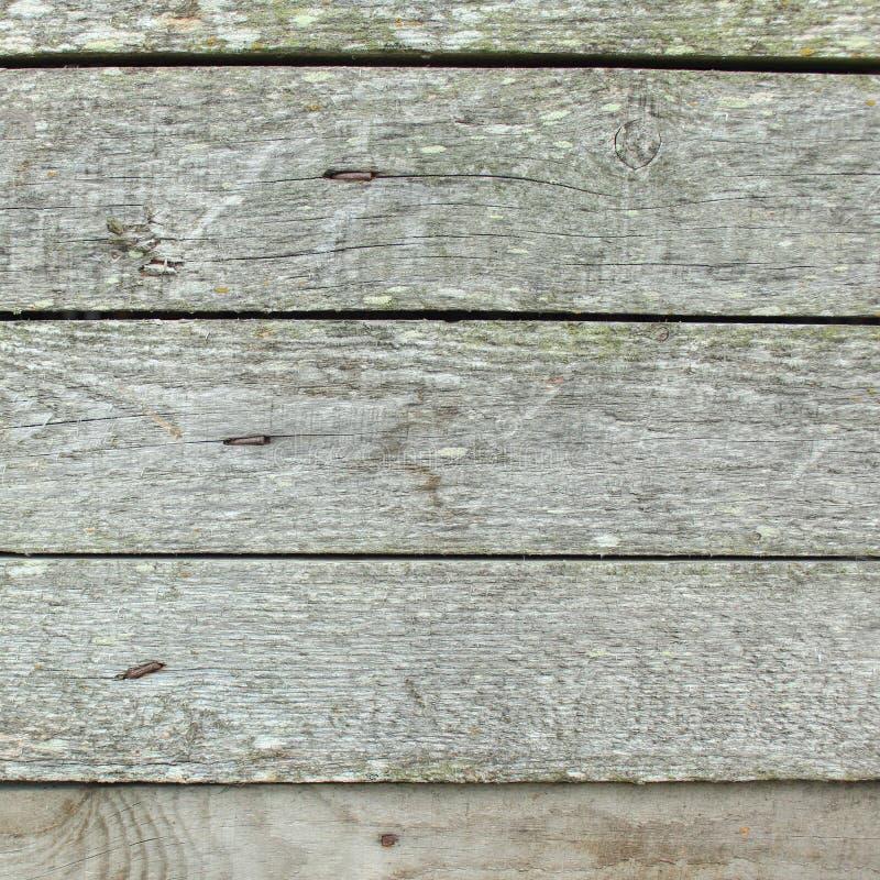 Bordo di legno della plancia, fondo di legno d'annata - vecchia plancia di legno stagionata nel colore grigio immagine stock
